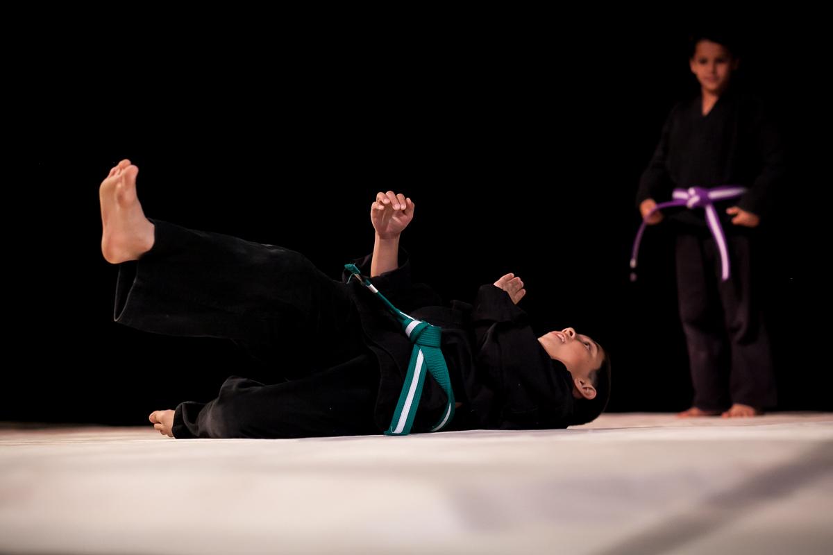 Martial Arts Fall