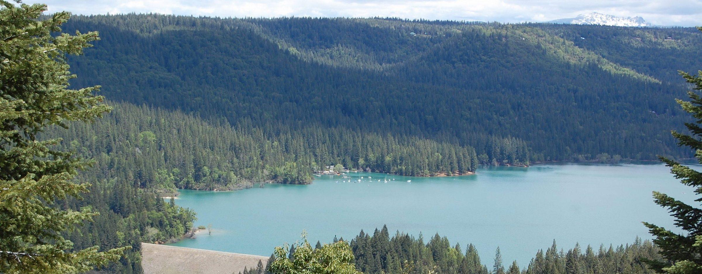 Scotts Flat Lake